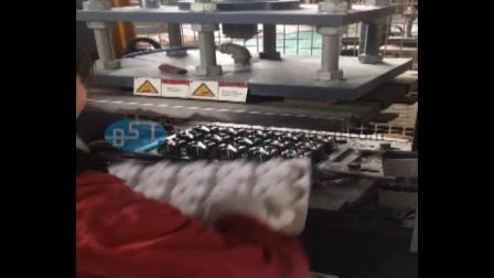 必硕科技——纸浆模塑核桃包装盒制造设备