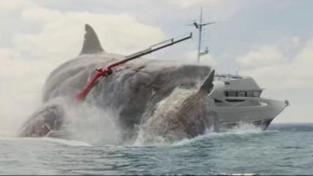 我在巨齿鲨 普通话版截了一段小视频