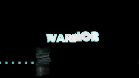 PDW WARRIOR 5384-IG