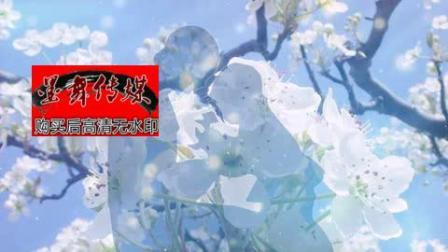 梨花又开放白色梨花感恩妈妈白色花朵浪漫唯美梦幻led视频素材