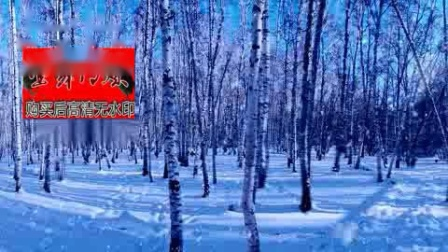 朴树白桦林歌曲背景晚会背景舞台树林年会晚会led视频素材