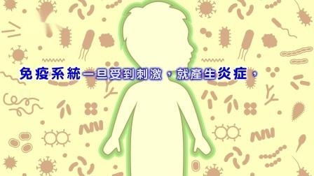 【小優活大健康】防堵萬病之源-炎症腸保健康是關鍵