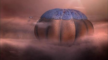 气态行星上可能存在的生命形式