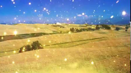 稻香LED大屏幕舞台背景视频素材 稻穗 麦田 小麦 麦浪 秋天 丰收