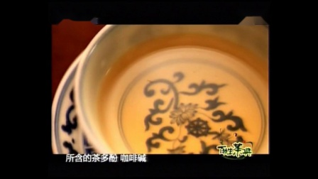 茶频道百姓茶典茶树的基本知识高清