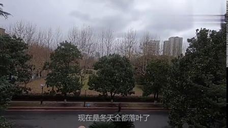 上海交通大学:中国排名前十的百年学府,穷游小伙10分钟带你看