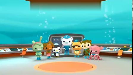 海底小纵队-巴克队长召集队员,海底报告时间到,这回介绍帝企鹅