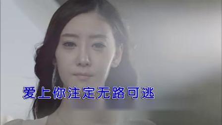刘皓伟-今生只为你倾倒红日蓝月KTV推介