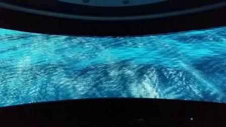 热高海底两万里4D影院《海龟之旅》20181125_105935