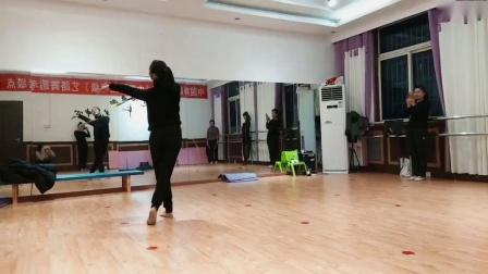 阜阳艺路成人古典舞粉墨视频分解动作第二节