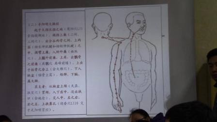 中医基础理论--经络(经脉走向和规律以及分布 、人体经络图 解破图)2