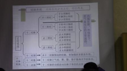 中医基础理论--经络(经脉走向和规律以及分布 、人体经络图 解破图)1
