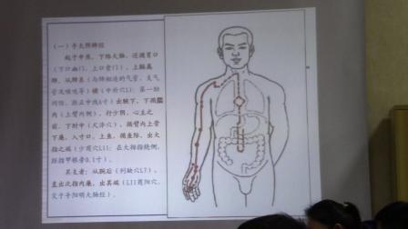 中医基础理论--经络(经脉走向和规律以及分布 、人体经络图 解破图)3