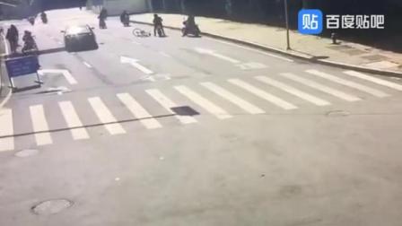 12月12日,南昌市公安局东湖分局接到报案:李先生的狗死了