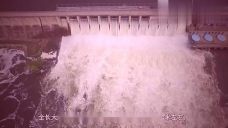 三峡大坝总库容量是多少,把水排完要多少天呢