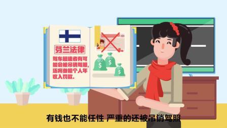 中国驻芬兰大使馆领事保护视频2 - 惊鸿一瞥