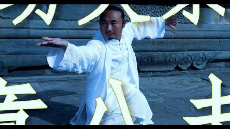 武当武术 形意八卦掌 太极神韵 八卦掌法