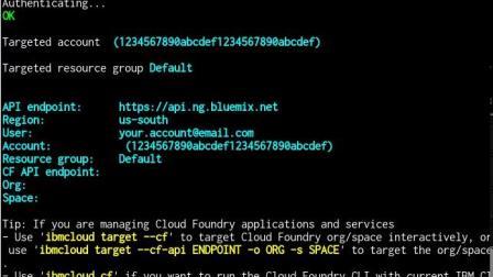 快速创建并部署 Spring 微服务:登录到 IBM Cloud