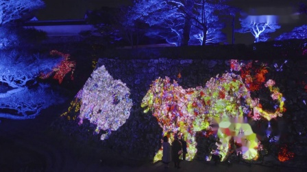 Animals of Flowers, Symbiotic Lives in the Stone Wall – Kochi Castle