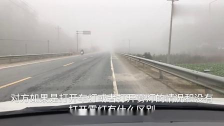 雾天开车注意事项,新手要学习