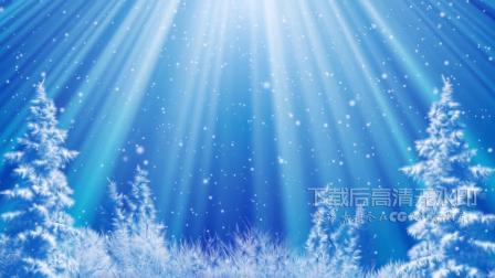 s884 超唯美蓝色雪花飘落冬季雪景雪松圣诞树圣诞节圣诞快乐祝福视频素材 剪辑合成 婚礼婚庆 开场视频 舞台 动态视频素材 视频特效 晚会视
