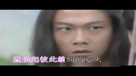 王馨平-再生花