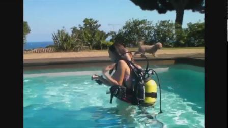 Two girls swimming pool scuba diving