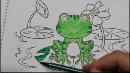 2-6岁幼儿园宝宝简笔画涂色青蛙小蝌蚪找妈妈故事