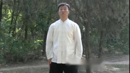 太极38式杨建超_3