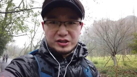杭州徒步线路推荐(一)之江-九溪-理安寺-大华山-龙头山-六和塔 中国美院步行来回20公里四小时