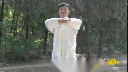 杨氏太极38式演示