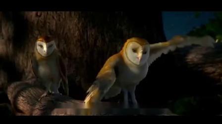 猫头鹰王国:守卫者 冰雪猫头鹰?怎么回事小兄弟
