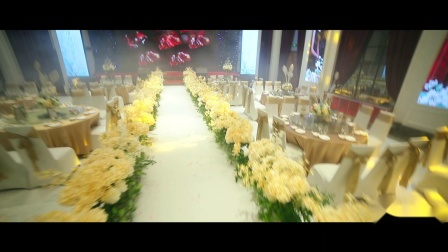 世纪星艾尚婚礼庄园荣誉出品 2018.11.13维也纳现场