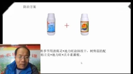 2019第一期果农乐讲堂分析中草药制剂前景及防病效果
