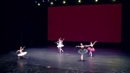 苏州小天使芭蕾舞团2018专场演出-《老师集锦》