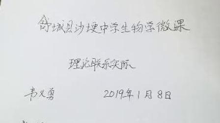 南港沙埂中学韦义勇微课