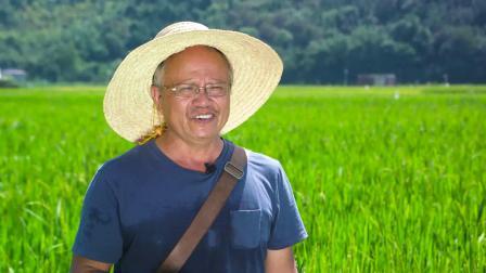 灌阳水稻片定稿1018