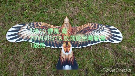 1米10 靜風 鳶 2019/01/12 放飛於台灣碧潭 1級風