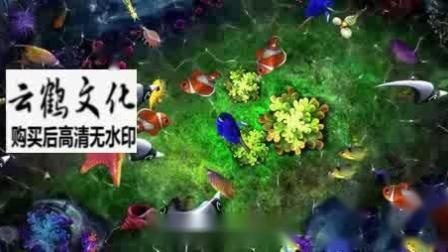 桌面投影沉浸海底世界餐桌投影海洋鱼热带鱼小丑鱼led背景视频素材