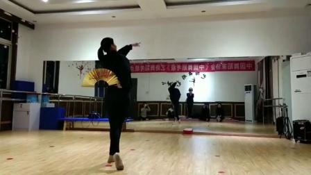 阜阳艺路成人古典舞粉墨视频分解动作第六节