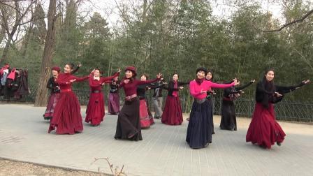 紫竹院相约紫竹广场舞---617-卓玛泉