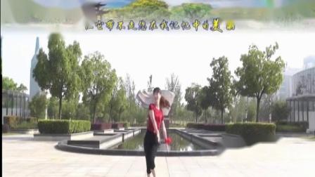 广场舞《美丽的阿玛拉》背后演示两遍