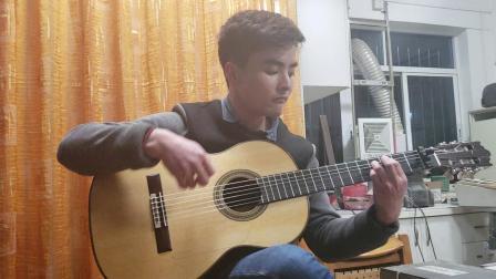 小蒋吉他 巴西玫瑰木弗拉门戈古典两用琴