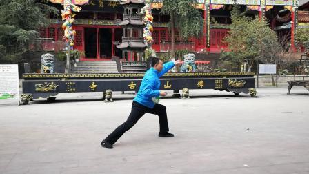 韩老师陈式太极剑49式