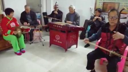 金蛇狂舞(民乐合奏)
