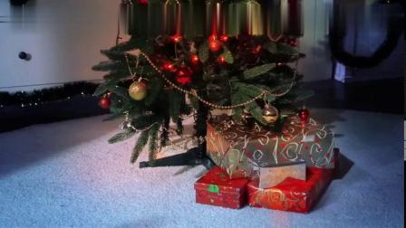 奥姆摘取圣诞树上的礼物,看到了圣诞老爷爷8661