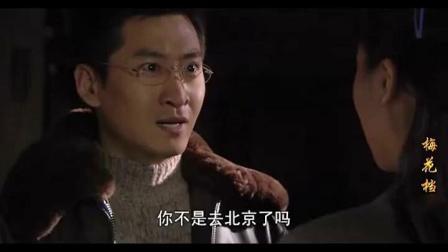 梅花档案全集(第01集)[高清]