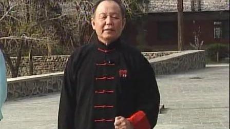 形意五行拳(8) 跟步钻拳 李德印教学-_标清