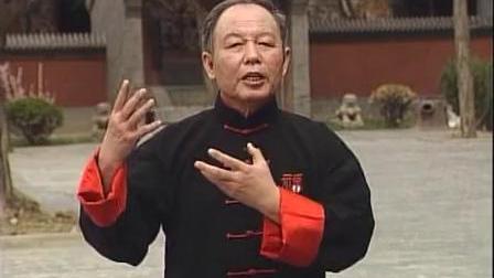 形意五行拳(15) 形意健身桩 李德印教学-_标清