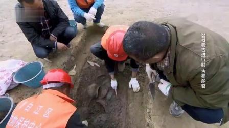 春秋一八五号大墓打开后,考古队员又有了新的
